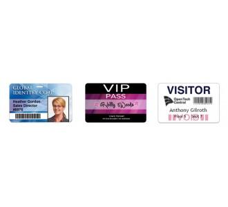 Tarjetas de PVC impresas / personalizadas